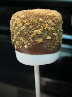 Marshmallow Pops -Smores!  Had these at a party tonight and they were great!