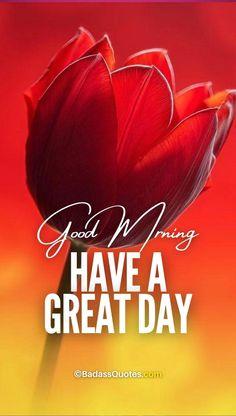 Blessed Sunday Morning, Sunday Morning Quotes, Good Afternoon Quotes, Cute Good Morning Quotes, Good Day Quotes, Good Morning Inspirational Quotes, Morning Messages, Happy Quotes, Sweet Good Morning Images