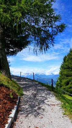 Summer in Mösern - Inn Valley  #austria #tyrol #Mösern  #alps #inntal #olympiaregionseefeld Mountains, Nature, Summer, Blog, Travel, Alps, Voyage, Trips, Summer Recipes