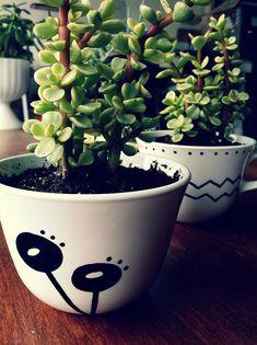teacup-planters3