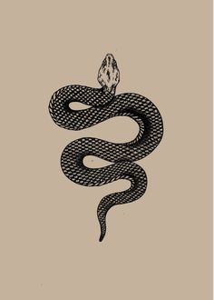 Snake tattoos are one tattoo design that you'll find hard to ignore. To give you a deadly dose of inspiration and ideas, I'm going to share with you the top best black mamba snake tattoos. Future Tattoos, New Tattoos, Small Tattoos, Friend Tattoos, Tatoos, Snake Drawing, Snake Art, The Snake, Piercing Tattoo