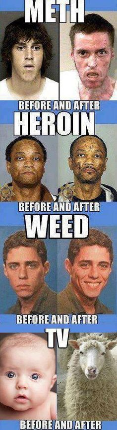 Meth, Heroin, Weed, TV. Clearly weed is the lesser of all evils.