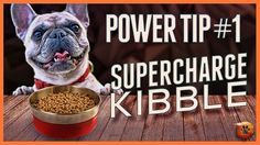Supercharge food rewards - Power tip use empowered kibble to train Puppy Training Tips, Dog Training Videos, Spiced Coffee, Dog Treats, Food Processor Recipes, Social Media, Pomeranians, Pet Food, Youtube