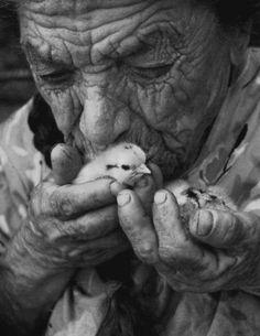 chicks ♥