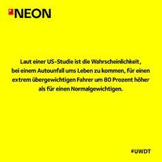 Mehr Unnützes Wissen findet ihr hier: http://www.neon.de/artikelliste/unnuetzeswissen #UWDT