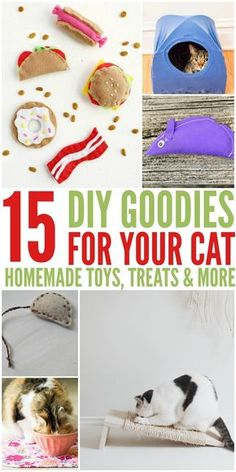 Awesome homemade cat toys & treats - 15 DIY Goodies for Your Cats - make your own car toys