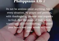 Most Powerful Bible Verses About Philippians, Regular Update Bible Verses, Short Bible Verses, Must Read and Receive Our Blessings in Our Life. Short Bible Verses, Powerful Bible Verses, Philippians 4 6 7, Peace Of God, Guard Your Heart, Worship Songs, Jesus Saves, Prayer Request, Christ