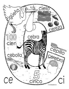 """C"" coloring page … Spanish Alphabet, Spanish Phrases, Spanish Lessons, Elementary Spanish, Spanish Classroom, Spanish Language Learning, Teaching Spanish, Spanish Anchor Charts, Spanish Worksheets"