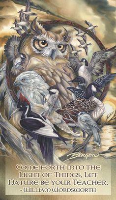 Bergsma Gallery Press::Products::Mailable Mini's::Birds::Multiple Bird Types / Wild Birds... - Mailable Mini