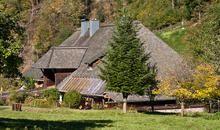 Hercherhof in Freiburg - hier will ich Urlaub machen!
