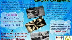 Kids' Events between 21-26 Feb 2015