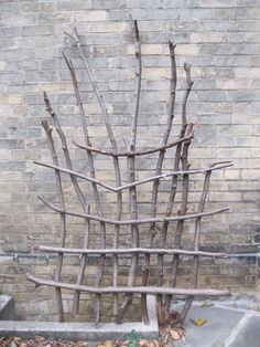 rustic trellis. Pruned fig branches work fabulous for this!