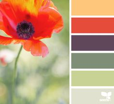 Stunning Paint Colors That Will Make Your Brick Exterior Beautiful — True Design House