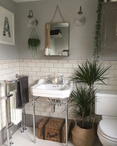 Pavilion Gray provides the perfect backdrop against all of the vibrant greenery in Nicola's bathroom.