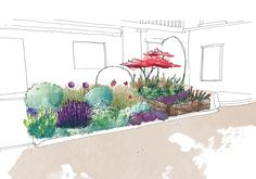 Flower bed - Sketch phase - Sandy MOREAU & 1Pact Verdure