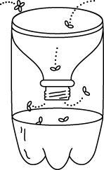 FRUIT FLIES TRAP: CUT AN EMPTY SODA BOTTLE AS SHOWN. / MIX ONE CUP OF WATER, A FOURTH CUP OF WHITE VINEGAR AND 4 DROPS OF DAWN SOAP / IN A BOTTLE AND ASSEMBLE AS SHOWN. / IF YOU WANT SMALLER HOLES SAVE LID AND DRILL TO SIZE AS DESIRED. SET WHERE NEEDED. / TO HANG DRILL HOLES THROUGH OPPOSITE SIDES OF BOTTLE AND USE TWINE.