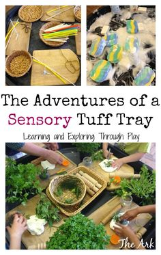 Sensory Tuff Trays, Tuff Tray ideas, Playgroup activities, The Ark Playgroup, Learning and Exploring Through Play