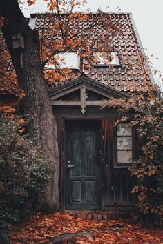 Autumn Cozy — banshy: Untitled by: Josh Alvarez Autumn Aesthetic, Autumn Cozy, Autumn Inspiration, Daily Inspiration, Fall Halloween, Beautiful Places, Scenery, Seasons, Abandoned Castles