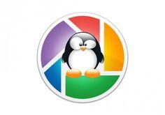 Picasa for Linux   (04/20/2012)  http://googleblog.blogspot.com/2012/04/spring-cleaning-in-spring.html#!/2012/04/spring-cleaning-in-spring.html