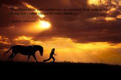 a horse following you