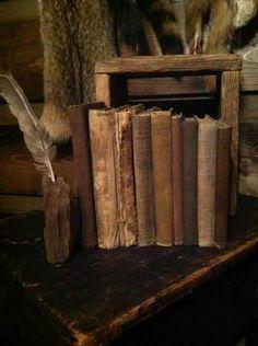 """""""Por el grosor del polvo en los libros de una biblioteca pública puede medirse la cultura de un pueblo""""."""