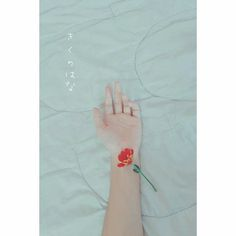 Nắm tay tôi. Korean Aesthetic, Aesthetic Photo, Scenery Wallpaper, Wallpaper Backgrounds, Hand Flowers, Hold My Hand, Kiss Makeup, Katana, Little Things