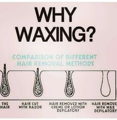Behrly There Wax Studio – Microblading Waxing Memes, Waxing Tips, Sugaring Hair Removal, Wax Hair Removal, Waxing Vs Shaving, Wax Studio, Studio 24, Full Body Wax, Esthetics Room