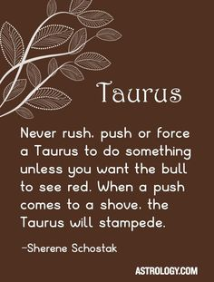 Never rush, push or force a Taurus to do something unless you want the bull to see red. When a push comes to a shove, the Taurus will stampede. Taurus Sun Sign, Sun In Taurus, Taurus Woman, Taurus And Gemini, Astrology Taurus, Zodiac Signs Taurus, My Zodiac Sign, Zodiac Quotes, Quotes Quotes