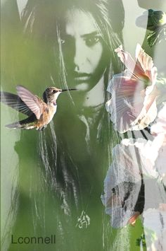 Earth Song, Digital Art, Birds, Leaves, Beautiful Women, Animals, Colorful, Touch, Heart