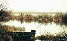 Река, Утром, Берег Реки, Вода, Природа, Пруд