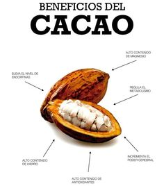 Chocolate Eclair Recipe, Cacao Chocolate, Healthy Chocolate, Healthy Life, Healthy Eating, Heath Care, Theobroma Cacao, Pescatarian Recipes, Vegetarian Options