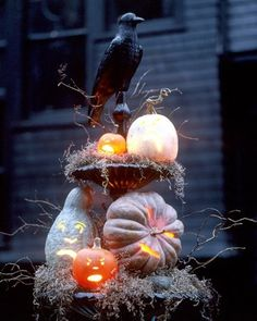 Spooky Gourdes on Pumpkins decorate birdbath ideas pumpkin halloween gourde crow halloween decorations