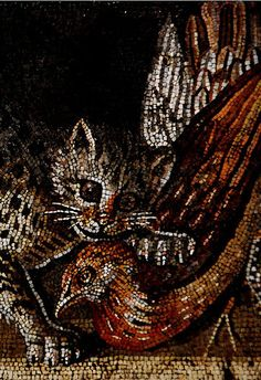 cat and bird, detail from photo of mosaic from either Pompeii or Herculaneum taken by Hans Ollermann