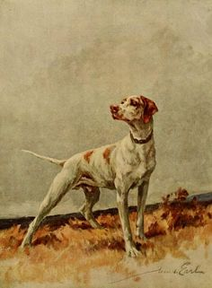 Earl, Maud (1864-1943) - The Power of the Dog 1910 (Pointer), 16-21. #vintage, #animals, #dog