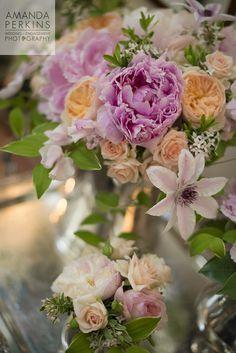 Spring!  Peonies Clematis Garden Roses Image By Amanda Perkins