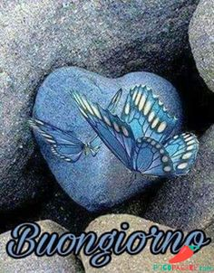 Buongiorno Immagini belle per Whatsapp 12 Morning Images, Morning Quotes, Heart Wallpaper, Good Morning, Good Morning Wishes, Frases, Pictures, Artists, Bonjour