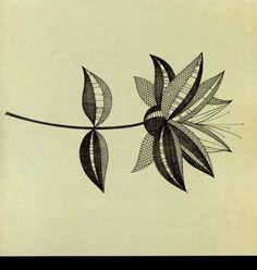 Albüm Arşivi