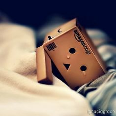 Danbo cry…