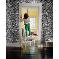 Schumacher Iconic Leopard Pattern Animal Print Wallpaper in Ink Blue - 2-Roll Set (9 Yards) | Chairish