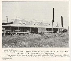 The Darling Downs Co-Operative Bacon Co Ltd, few factory at Willowburn, near Toowoomba From Queensland Agricultural Journal, 1926,