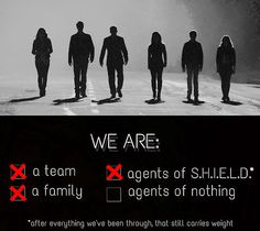 We Are || Skye, Grant Ward, Phil Coulson, Melinda May, Leo Fitz, Jemma Simmons || AOS 1x03 The Asset || 500px × 447px || #fanedit #quotes