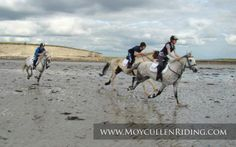 An ideal location to experience a beach trek and beach riding close to Salthill and Galway city Ireland. Beach Rides, Galway Ireland, Connemara, Horse Riding, Trekking, Camel, Pony, To Go, Camping