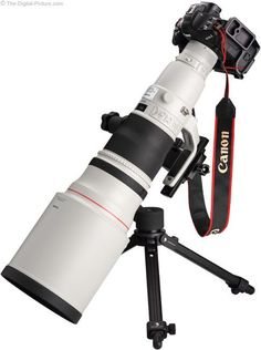600mm Angle View on Canon EOS 1Ds Mark III DSLR Camera.  For more images and information on camera gear please visit us at www.The-Digital-Picture.com