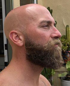 40 in a month. Medium Beard Styles, Beard Styles For Men, Hair And Beard Styles, Bald Men With Beards, Bald With Beard, Long Beards, Goatee Beard, Beard Haircut, Beard And Mustache Styles