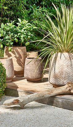 Pot Jardin, Garden Deco, Container Gardening, Interior Inspiration, Planter Pots, Lily, Patio, Plants, Garden Design