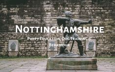 Home Dog Training Nottingham and East Midlands area. Sean Purdy is your local expert in dog behavioural and puppy education training. Service Dog Training, Best Dog Training, Perfect Image, Perfect Photo, Love Photos, Cool Pictures, Dog Training Methods, Getting A Puppy, Aggressive Dog