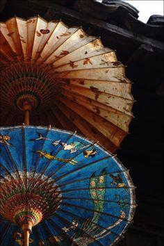"""paraguas de papel llamado """"Beijing y Umbrella"""", totalmente hecho a mano  cubierto con aceite de sésamo"""