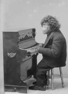 Monkey Piano!  Hey...We are on a budget......It's the best I could do for our beach party.