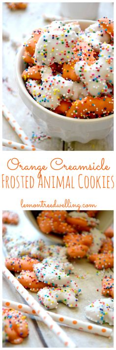 Orange Creamsicle Circus Animal Cookies | Lemon Tree Dwelling