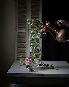 As part of a Im playing a game with you called real or fake its just a bit of fun to start the week. Ivy Plants, Fake Plants, Ivy Rose, Navy Walls, Creative Shot, Style Challenge, Beautiful Images, House Plants, Ladder Decor